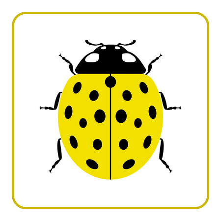 lady bug: Ladybug small icon. Yellow lady bug sign, isolated on white background. Wildlife animal design. Cute colorful ladybird. Insect cartoon beetle. Symbol of nature, spring, summer. Vector illustration Illustration
