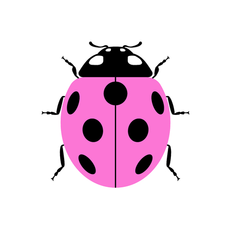 lady beetle: Ladybug small icon. Pink lady bug sign, isolated on white background. Wildlife animal design. Cute colorful ladybird. Insect cartoon beetle. Symbol of nature, spring or summer. Vector illustration