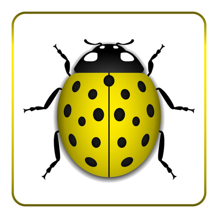 lady beetle: Ladybug small icon. Yellow lady bug sign, isolated on white background. 3d volume design. Cute colorful ladybird. Insect cartoon beetle. Symbol of nature, spring or summer. Vector illustration Illustration
