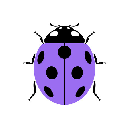 lady beetle: Ladybug small icon. Lilac lady bug sign, isolated on white background. Wildlife animal design. Cute colorful ladybird. Insect cartoon beetle. Symbol of nature, spring or summer. Vector illustration Illustration