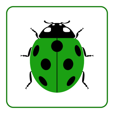 lady beetle: Ladybug small icon. Green lady bug sign, isolated on white background. Wildlife animal design. Cute colorful ladybird. Insect cartoon beetle. Symbol of nature, spring or summer. Vector illustration