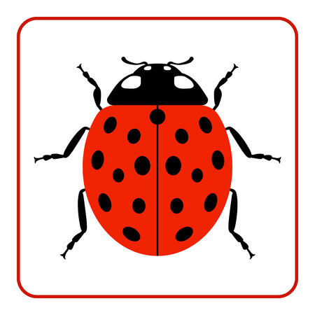 lady beetle: Ladybug small icon. Red lady bug sign, isolated on white background. Wildlife animal design. Cute colorful ladybird. Insect cartoon beetle. Symbol of nature, spring, summer. Vector illustration
