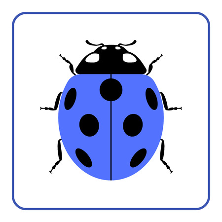 lady beetle: Ladybug small icon. Blue lady bug sign, isolated on white background. Wildlife animal design. Cute colorful ladybird. Insect cartoon beetle. Symbol of nature, spring or summer. Vector illustration
