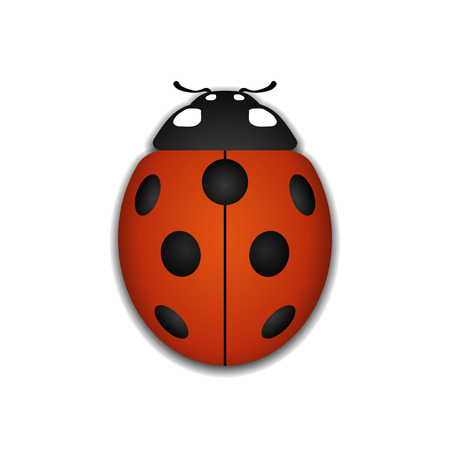 one color: Ladybug small icon. Red lady bug sign, isolated on white background. 3d volume design. Cute colorful ladybird. Insect cartoon beetle. Symbol of nature, spring or summer. Vector illustration