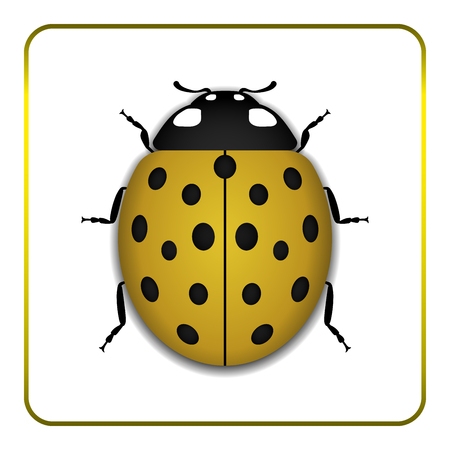 one color: Ladybug small icon. Yellow lady bug sign, isolated on white background. 3d volume design. Cute colorful ladybird. Insect cartoon beetle. Symbol of nature, spring or summer. Vector illustration Illustration