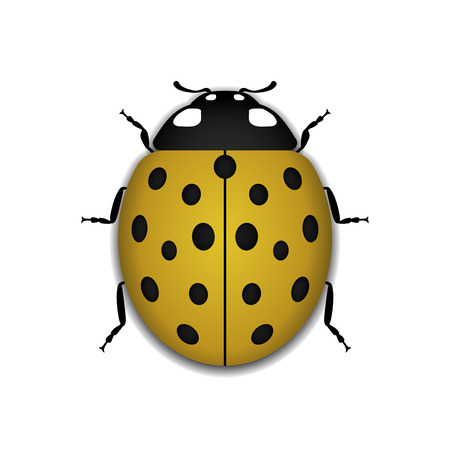 Ladybug small icon. Yellow lady bug sign, isolated on white background. 3d volume design. Cute colorful ladybird. Insect cartoon beetle. Symbol of nature, spring or summer. Vector illustration Illustration