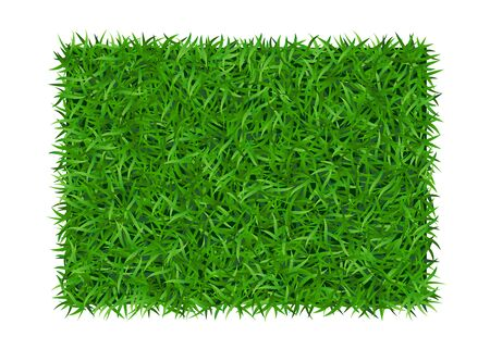 Green grass background. Lawn nature. Abstract field texture. Symbol of summer, plant, eco and natural, growth or fresh. Design for card, banner. Meadow template for print products. Illustration Stock Photo