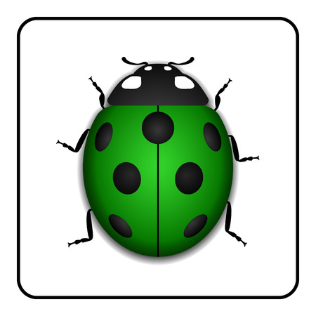 Ladybug small icon. Green lady bug sign, isolated on white background. 3d volume design. Cute colorful ladybird. Insect cartoon beetle. Symbol of nature, spring or summer. Vector illustration Illustration