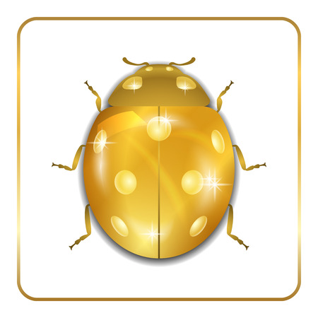 Golden metal lady bug animal sign, isolated on white background. 3d volume bright design. Cute shiny jewelry ladybird. Lady bird closeup beetle. Vector illustration Vettoriali
