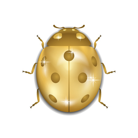 Ladybug gold insect small icon. Golden metal lady bug animal sign, isolated on white background. 3d volume bright design. Cute shiny jewelry ladybird. Lady bird closeup beetle. Vector illustration