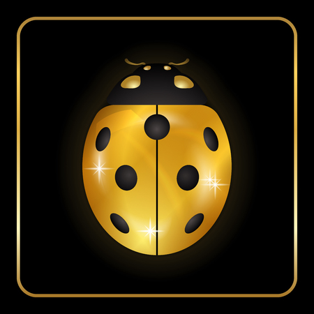 Ladybug gold insect small icon. Golden metal lady bug animal sign, isolated on black background. 3d volume bright design. Cute shiny jewelry ladybird. Lady bird closeup beetle. Vector illustration Illustration