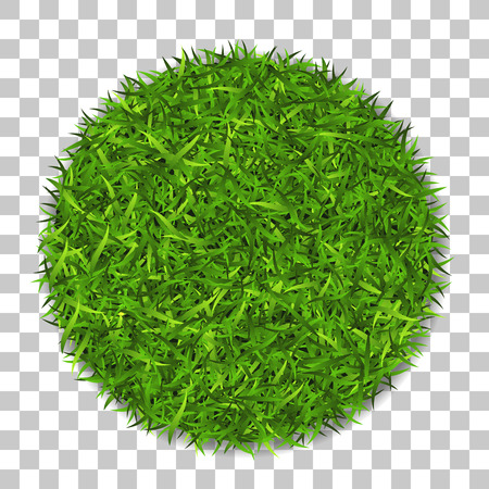 Grass circle 3D. Green plant, grassy round field, isolated white transparent background. Illustration