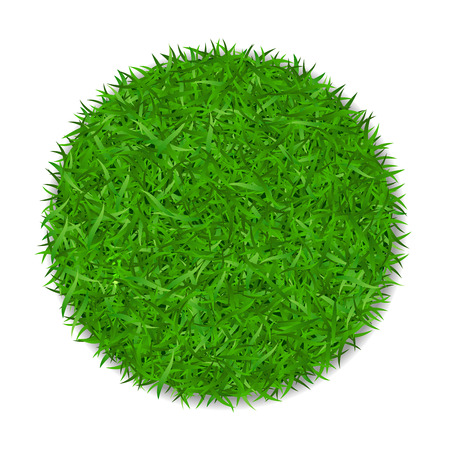 Grass circle 3D. Green plant, grassy round field, isolated on white background. Symbol of globe sphere, fresh nature design, clear earth. Ecology natural design Save the planet Vector illustration
