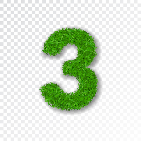 Grass number three. Green number three isolated on white transparent background. Green grass 3, fresh symbol of nature, plant lawn, summer. Grass texture spring font. Eco design Vector illustration