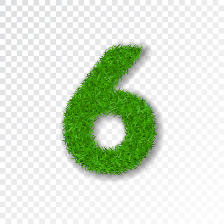 Grass number six. Green number six, isolated on white transparent background. Green grass 6, fresh symbol of nature, plant lawn, summer. Grass texture font. Beautiful eco design Vector illustration