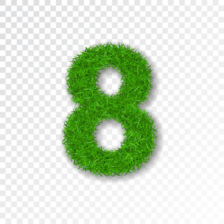 Grass number eight. Green number 8, isolated on white transparent background. Green grass eight, fresh symbol of nature, plant lawn, summer. Grass texture spring font. Eco design Vector illustration