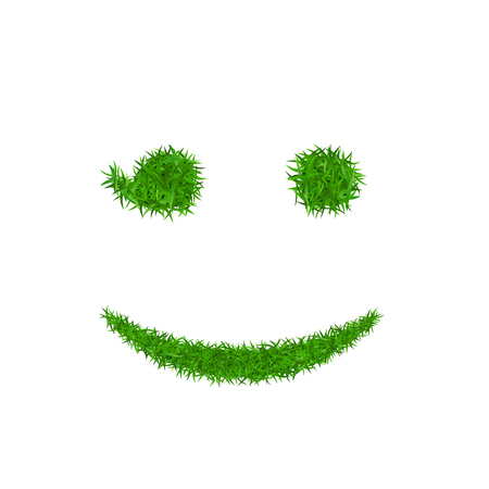 Green grass face wink smile. Smiley grassy emoticon icon, isolated white background. Happy smiling sign. Symbol ecology, eco lawn, safe nature, happy emotion, fresh spring Vector illustration