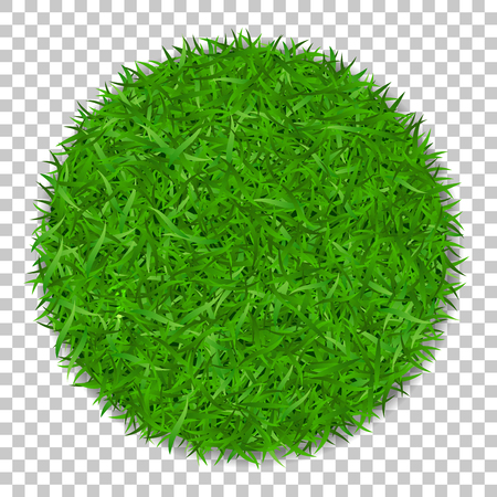 Grass circle 3D. Green plant, grassy round field, isolated white transparent background. Symbol of globe sphere, fresh nature design, clear earth. Ecology design Save the planet Vector illustration