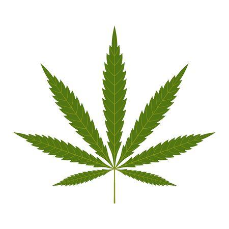 Icono de hoja de cannabis. Fondo blanco aislado de la silueta verde indica sativa. Planta de hierbas medicinales. Cáñamo de marihuana natural. Adicción, humo, droga, ilegal, narcótico, marihuana, diseño, vector, ilustración
