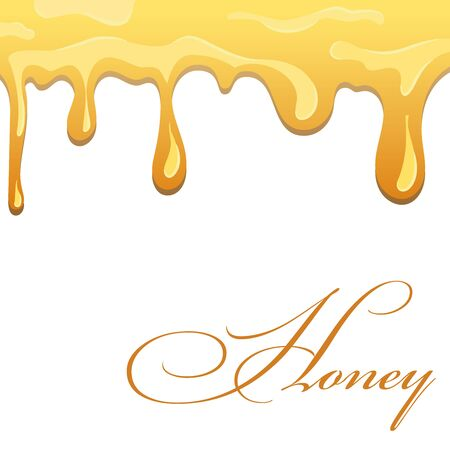 Honey drip syrup. Bee liquid drop, isolated white background. Gold oil food molten design. Golden splash caramel pure product. Candy melt sauce, sweet honey sticky nectar Vector illustration