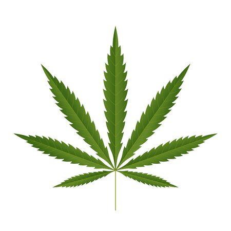 Icona foglia di cannabis. Silhouette verde indica sativa isolato sfondo bianco. Pianta dell'erba della medicina di erbe. Canapa da erba naturale. Dipendenza da fumo droga Progettazione illegale di marijuana narcotica Illustrazione vettoriale