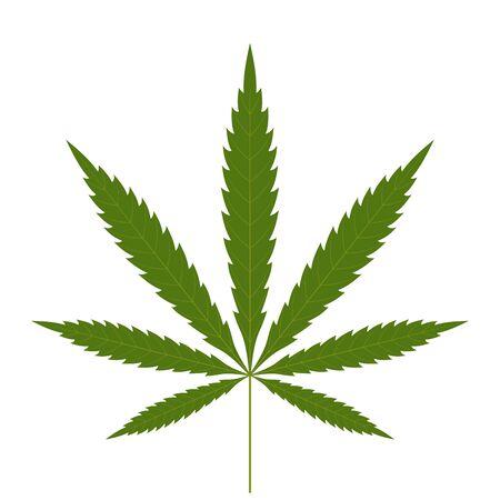 Icono de hoja de cannabis. Fondo blanco aislado de la silueta verde indica sativa. Planta de hierbas medicinales. Cáñamo de marihuana natural. Adicción, humo, droga, ilegal, narcótico, marihuana, diseño, vector, ilustración Ilustración de vector