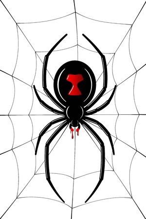 Spider Black Widow, cobweb. Red black spider 3D, spiderweb, isolated white background. Scary Halloween decoration icon web. Symbol networking, animal arachnid, creepy insect fear Vector illustration 向量圖像