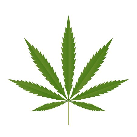 Cannabis leaf icon. Green silhouette indica sativa isolated white background. Herbal medicine herb plant. Natural weed hemp. Addiction smoke drug Illegal narcotic marijuana design Vector illustration Illustration