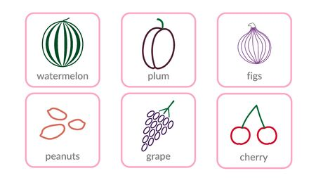 Fruits and berries, objects icons set, isolated on white background. Summer fresh food. Juicy tasty healthy dessert. Vitamin organic products nutrition. Symbol of health, diet. Vector illustration  イラスト・ベクター素材
