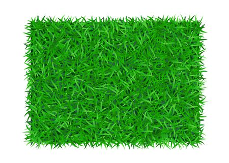 Green grass background 3D. Lawn greenery nature. Abstract soccer field texture, rectangle frame, square. Ground landscape grassland pattern. Grassy design. Beautiful grow meadow Vector illustration