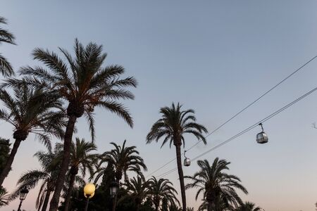 Beautiful view on exotic palm trees on bright lanterns and funiculars in the sky at sunset. Southern spain. Europe.