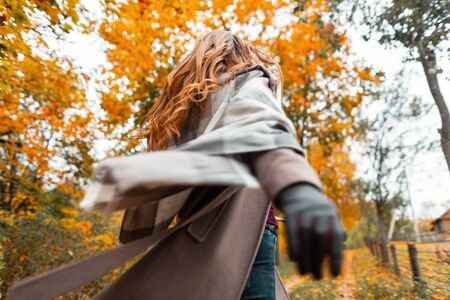 Fashionable young woman in stylish autumn outerwear with a knitted warm scarf in black leather gloves walks through the woods. Elegant girl. Follow me. Back view.