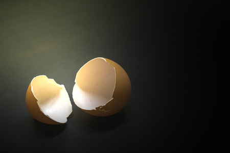 Broken egg on black background and space for text on right of image