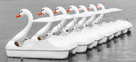 The line of Boats and Swan Pedal in the pond of the Benjakiti Park, Bangkok. Archivio Fotografico