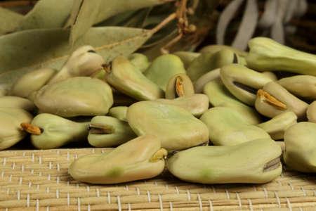 legumbres secas: Habas org�nicos junto a hojas de laurel