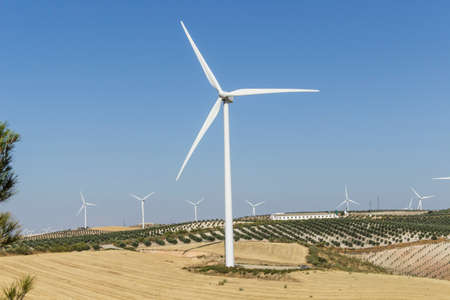 olive groves: Big windmill in the foreground, with other windmills, olive groves and farm in the background Stock Photo