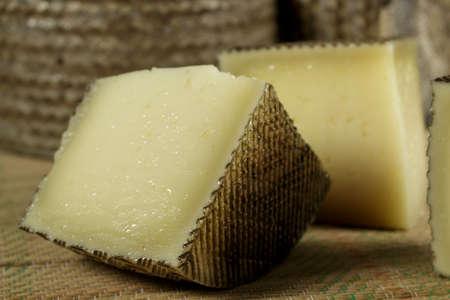 Pieces of sheep milk cheese Stockfoto
