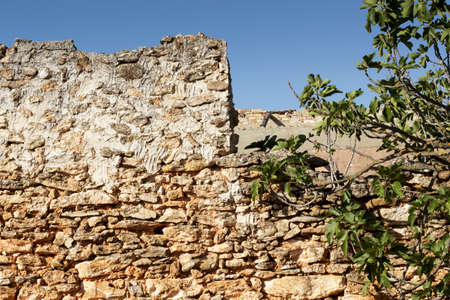 abandoned farmhouse abandoned farmhouse: Stone wall of an abandoned farmhouse and fig branches