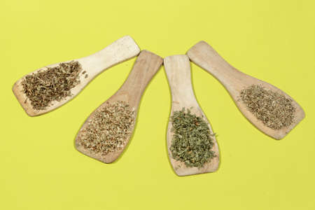dried herbs: Aromatic dried herbs on green background: Oregano, thyme, parsley and cumine Stock Photo