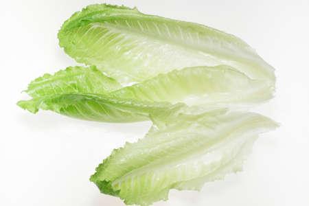 romaine: Several romaine lettuce leaves, backlit Stock Photo