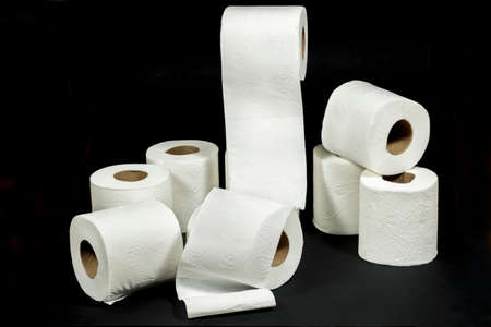 fecal: White rolls of toilet paper with embossed decorative patterns