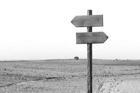 Wooden signpost indicating the left and right directions in a rural landscape. Black and white image