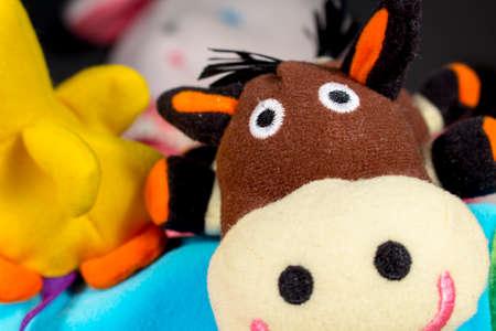 playthings: Funny teddy donkey looks at camera. Baby toys. Stock Photo
