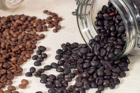 drupe: Torrefacto coffee beans beside natural roasted coffee beans