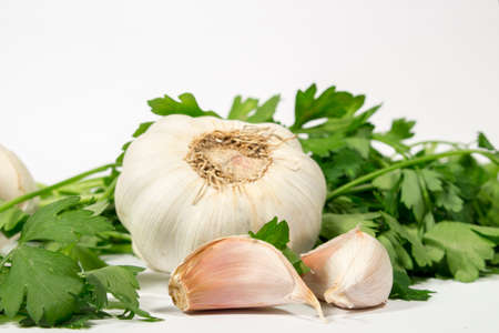 petroselinum sativum: Bulb and cloves of garlic beside fresh parsley, on white