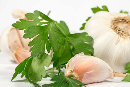 petroselinum sativum: Garlic clove with fresh parsley, in front of several garlic bubs