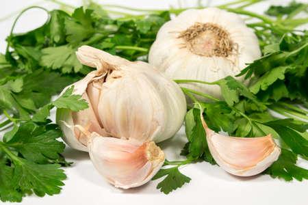 petroselinum sativum: Garlic cloves, bulbs and parsley leaves, on white background Stock Photo