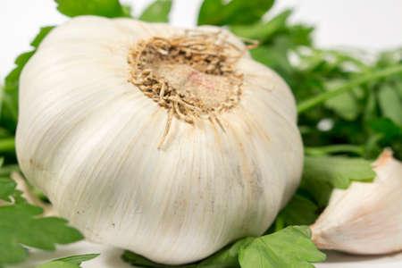 petroselinum sativum: Garlic bulb beside a clove and fresh parsley, on white