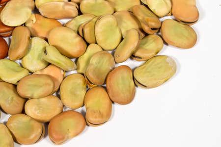 dried vegetables: Las semillas de haba con meses de secado. Espacio en blanco en la parte inferior derecha