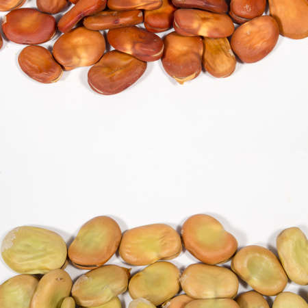 dried vegetables: Dry seeds of broad bean of different colors. Blank space at center